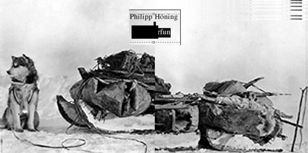 10qm-PhilippHoening